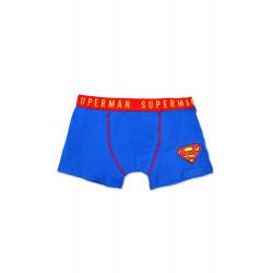 Boxer Superman