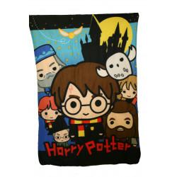 Plaid polaire Harry Potter