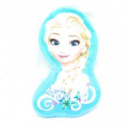 Coussin fantaisie La reine des Neiges